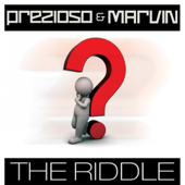 The Riddle (Radio Edit Mix)