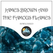 James Brown and The Famous Flames - Good Good Lovin'