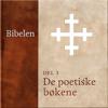 N. N. - De poetiske bøkene (Bibelen 3) artwork