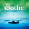 Soothe Vol 1 Music To Quiet Your Mind and Soothe Your World