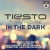 In the Dark (feat. Christian Burns) [Remixes] - EP