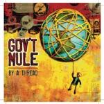 Gov't Mule - Broke Down on the Brazos