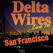 Delta Wires - Take Your Hand Outta My Pocket