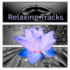 Relaxing Tracks for Relaxation & Massage, Meditation Yoga, Spa & Wellness, Reiki Healing, Sleep Therapy, 20 Minutes Sessions, Rain Sounds, Nature Sounds