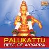 Pallikattu - Best of Ayyappa
