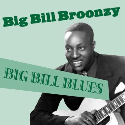 Big Bill Blues - Big Bill Broonzy