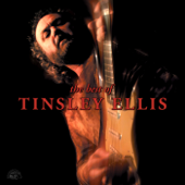 The Best of Tinsley Ellis