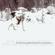 The String Quartet Tribute to Snow Patrol - Vitamin String Quartet