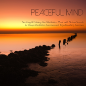 Relaxing Soothing Music for Yoga Breathing - Peaceful Music Orchestra