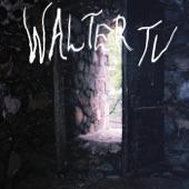 Walter TV - Walter's Kaya