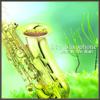 Hate In the Rain - Ltq Saxophone