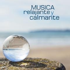 Música Relajante y Calmante con Ruido Blanco para el Bebé: Sonidos de la Naturaleza para Recién Nacidos y Ayudar a Dormir los Niños