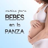 Música para Bebes en la Panza - Canciones Relajantes para Niños en el Vientre Materno