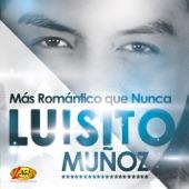 Luisito Muñoz - No Hay por Quién Llorar