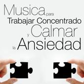 Música para Trabajar Concentrado y Calmar la Ansiedad
