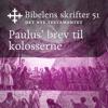KABB - Paulus' brev til kolosserne (Bibel2011 - Bibelens skrifter 51 - Det Nye Testamentet) artwork