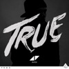 4) Avicii - True