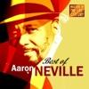 Masters of the Last Century Best of Aaron Neville