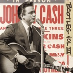Johnny Cash - One Piece At a Times