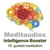 Intelligence Booster (15' Guided Meditation) - Meditaudios