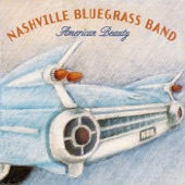 The Nashville Bluegrass Band - The Johnson Boys