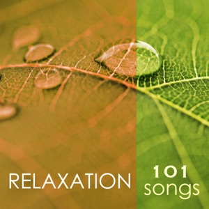 Spa Music Relaxation Meditation - Easy Listening