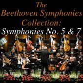 II. Symphony No. 7 In A Major, Op. 92: Allegretto (2)