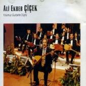 Ali Ekber Cicek - Haydar Haydar