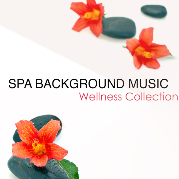 spa background music wellness collection background music for spa