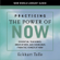 Practicing the Power of Now: Teachings, Meditations, and Exercises from the Power of Now (Unabridged)