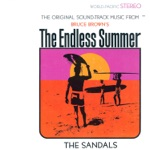 "The Sandals - Theme from ""the Endless Summer"""