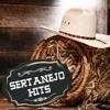 Sertanejo Hits - Various Artists