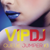 VIP DJ Queue Jumper #3 - Various Artists