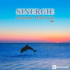 Summer Afternoon Vol.1