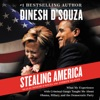 Stealing America: What My Experience with Criminal Gangs Taught Me about Obama, Hillary, and the Democratic Party (Unabridged) AudioBook Download