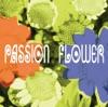 PASSION FLOWER ジャケット写真