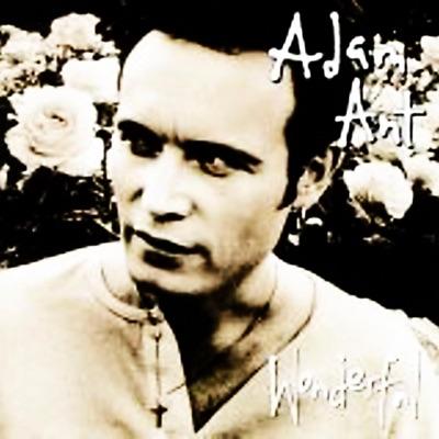 Extra Wonderful - Adam Ant