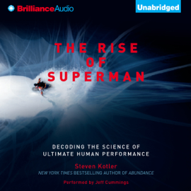 The Rise of Superman: Decoding the Science of Ultimate Human Performance (Unabridged) audiobook