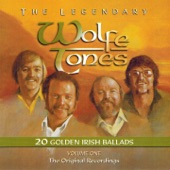 The Wolfe Tones - The Rights of Man