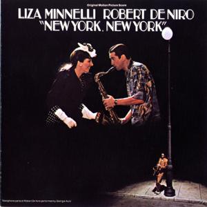 Liza Minnelli - Theme from New York, New York