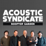 Acoustic Syndicate - King for a Day