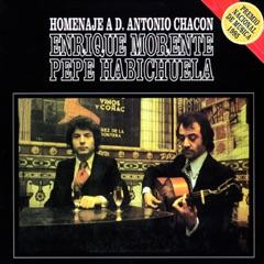 Homenaje Flamenco a D. Antonio Chacon