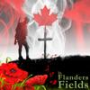 Amy St. John - In Flanders Fields artwork