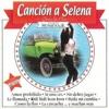 Araceli Y La Furia Grupera - Mega Mix Selena: Amor Prohibido  La Carcacha  No Debes Jugar  Como La Flor  Bidi Bidi Bom Bom  Baila Mi Cumbia  La Techno Cumbia