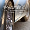 Roadster 01 - The License for Fine Music of Perfect Coolness