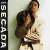Jon Secada - Just Another Day  arte