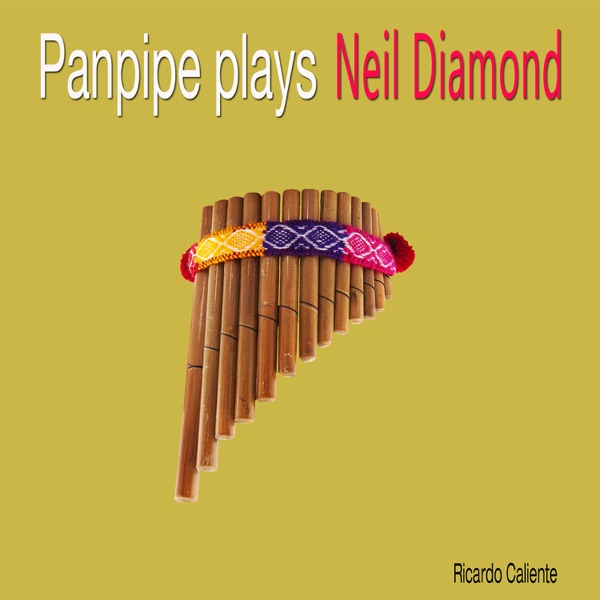 Neil Diamond - Sweet Caroline (Good Times Never