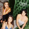 Charmed (Classic), Season 2 wiki, synopsis