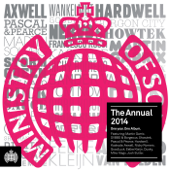 Ministry of Sound - The Annual 2014