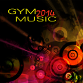 Gym Music 2014 - EDM Electronic Songs for Workouts in Fitness Center